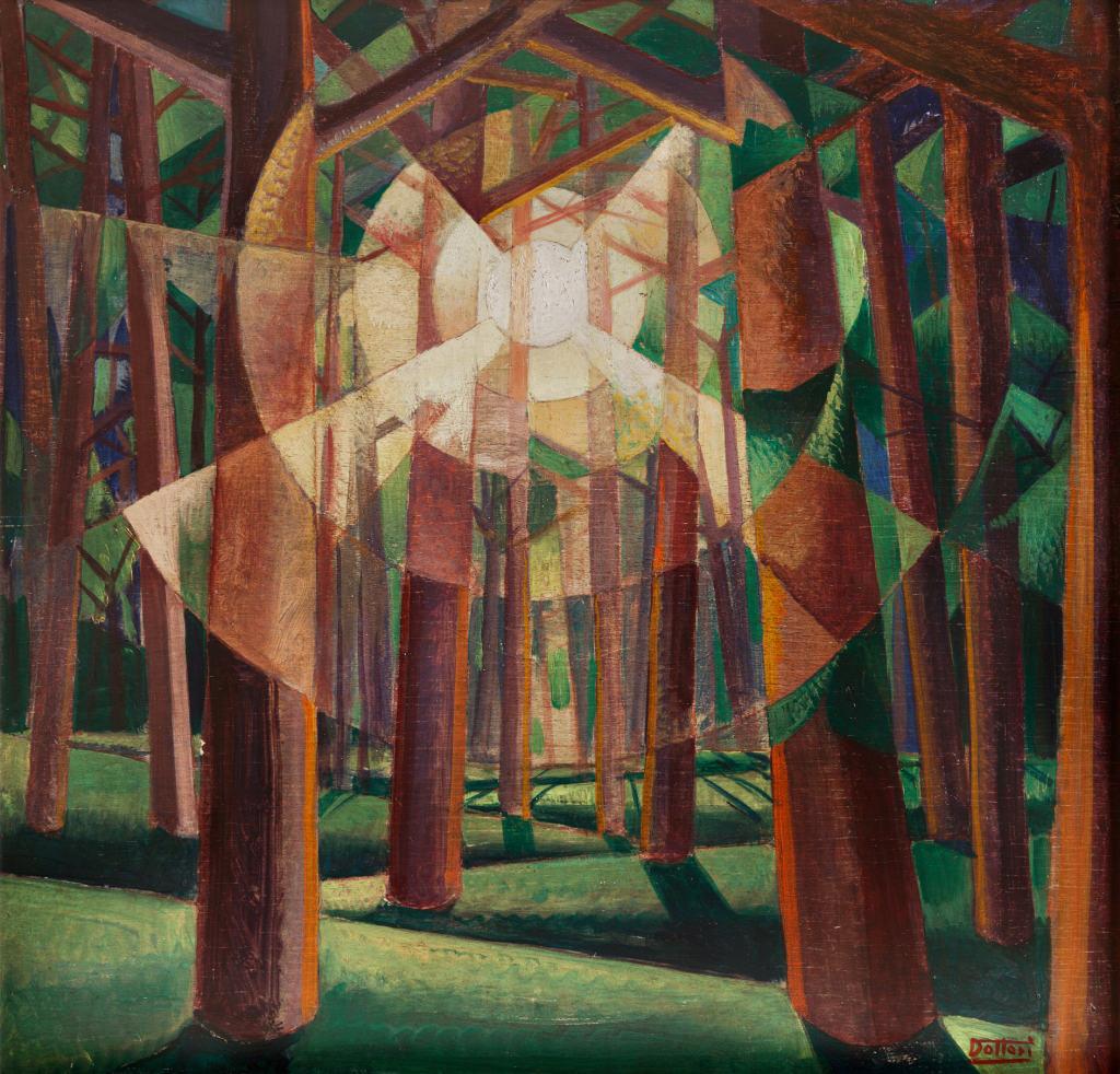 Dottori - Sole tra gli alberi